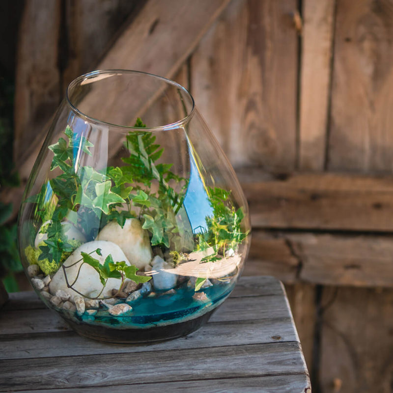 Szklane ogrody – jeziora